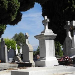 mortaliteit bij ASR